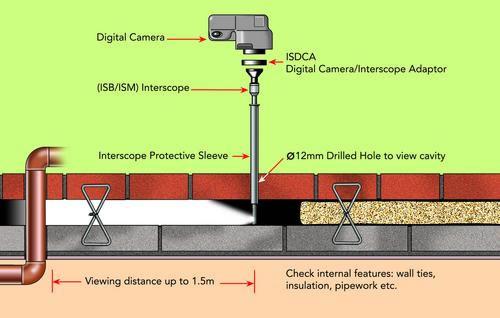 cavity walls  examined with endoscope