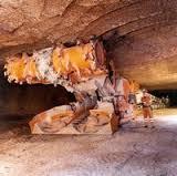 salt mine borer