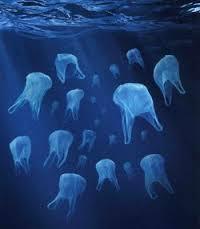 plastic bags ocean