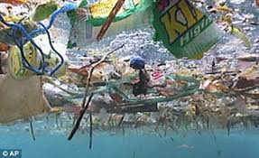 plastic waste in the sea